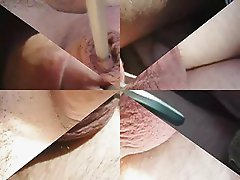 Penis Insertion