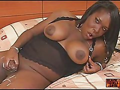 hot black trannies