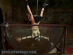 Rough BDSM Scene With a Brave Babe
