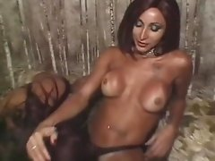 Alluring shemale giving her dude a superb blowjob before being nailed hardcore in a threesome sex